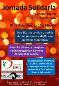 Cartel Jornada Solidaria 28-12-2014